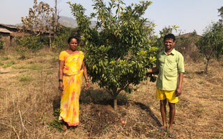 Farmer visit feature 2018 320x200 News