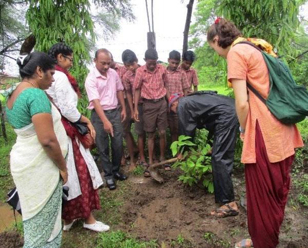 exp 3 3b 07 18 Kalpavriksh (Wish Fulfilling Tree) Part II