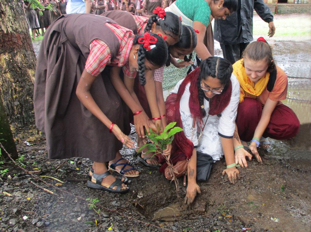 Kalpavriksh (Wish-Fulfilling Tree) Part II